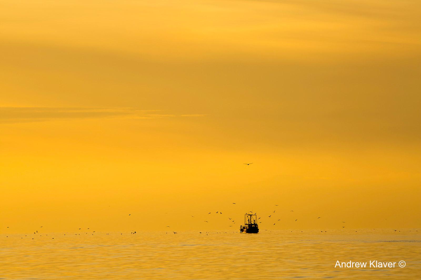 Fishing boat, winter fog